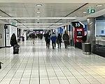 Sydney Airport Virgin Australia Terminal 03.jpg