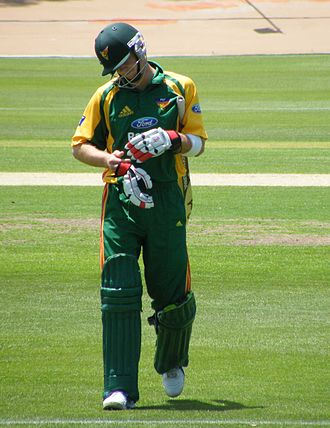 Tim Paine - Paine playing for Tasmania in 2008