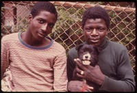 TWO BLACK YOUTHS AND A DOG IN PATERSON, NEW JERSEY. THIS PROJECT IS A PORTRAIT OF THE INNER CITY ENVIRONMENT. IT... - NARA - 555929.tif