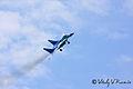Tambov Airshow 2008 (64-16).jpg