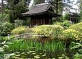 Tatton Japanese Garden.jpg