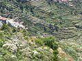 Teneriffa – Tenogebirge – Masca vom Mirador de La Cruz de Hilda - panoramio.jpg