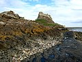 The Castle, Holy Island - geograph.org.uk - 410607.jpg