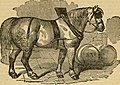 The Lancaster Farmer (1873) (14590132539).jpg