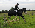 The Plough - NECDH - 2010 (147).jpg