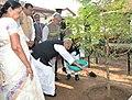 The President, Shri Pranab Mukherjee planting a sapling at the Sabarmati Ashram, Ahmedabad, in Gujarat on December 01, 2015. The Chief Minister of Gujarat, Smt. Anandiben Patel is also seen.jpg