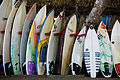 The Surfboards (8422914814).jpg