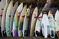 The Surfboards (8422914814).jpg