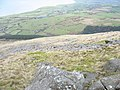 The boulder-strewn north slope of Gyrn Goch - geograph.org.uk - 344519.jpg