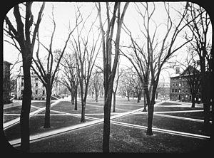 Secret Court of 1920 - Harvard Yard in 1905