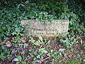 Thomas Lobb botanist headstone Devoran Church Cornwall.jpg