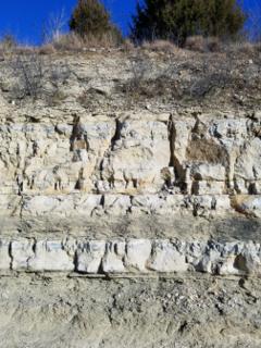 Wreford Limestone