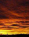 Thunder Sunrise.jpg
