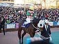 Tokyo Daishoten Day at Oi racecourse (31180050173).jpg