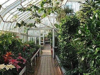Tollcross, Glasgow - The interior of Tollcross Winter Garden in 2006.