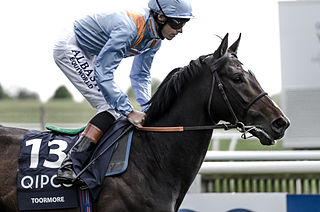 Toormore Thoroughbred racehorse