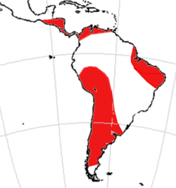Range of Toxodontidae based on fossil record