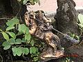 Trấn Quốc Pagoda4.JPG