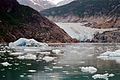 Tracy Glacier 0092.jpg