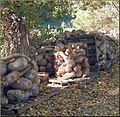Tree Farm, Ghords 12-8-12c (8270315666).jpg