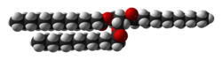 Space-filling model of trimyristin
