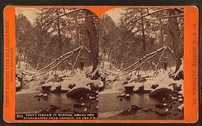 Trout stream in winter, among the Alleghenies near Cresson, on the P. R. R, by R. A. Bonine.jpg