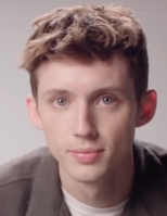 Picture of a band or musician: Troye Sivan