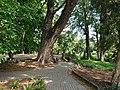 Tunduru Gardens in Maputo.jpg