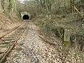 Tunnelportal des Rochsburger Tunnels der Muldentalbahn (2).jpg