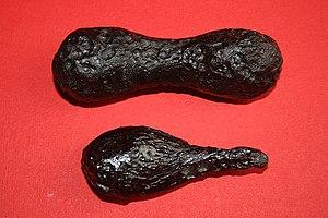 Tektite - Two splash-form tektites, molten terrestrial ejecta from a meteorite impact