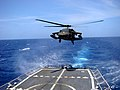 US Navy 041010-N-0000X-001 An Army UH-60 Black Hawk helicopter from the Winged Warriors of 1-228th Aviation Regiment.jpg