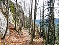 Ukanc - trail 4.jpg