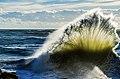 Une Vague - A wave.jpg