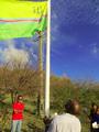 Unity flag (St. Martin Island).png