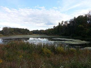 Upper Deckers Creek Wildlife Management Area