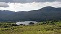 Upper Lake, Killarney National Park, Ring of Kerry (506616) (27615161073).jpg