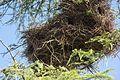 VIEW , ®'s - DigiGraf - Ð - ┼ , MADRID PARQUE TIERNO GALVAN COLONIA de URRACAS - panoramio (6).jpg