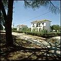 Vale da Judia, Herdade de Pegões, Montijo, Portugal (3507560564).jpg