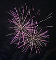 Valentines Day Fireworks 2011 (5445424602).jpg