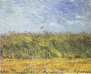 Wheat Field with a Lark - Image: Van Gogh Getreidefeld mit Mohnblumen und Lerche