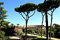 View from Palatine Hill 2011 2.jpg