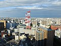 View from Toyama City Hall, east side.jpg