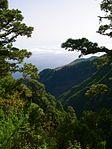 View of nord La Palma.jpg