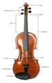 Violin dele beskrivelse.png
