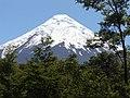 Volcán Osorno desde Saltos del Petrohué.JPG