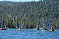 Weta race start Huntington Lake.jpg