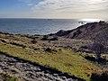 White Cliffs, Dover – IMG 20180117 155436379 edited (39277513855).jpg