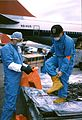 Wildlife Inspector in Seattle dons protective gear before checking live primate shipment.jpg