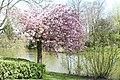 Wilhelminapark, Breda P1460801.jpg
