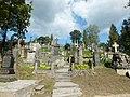 Wilno - Cmentarz na Rossie DSCF6029.jpg